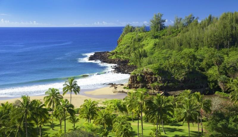 the garden island kauai - The Garden Island